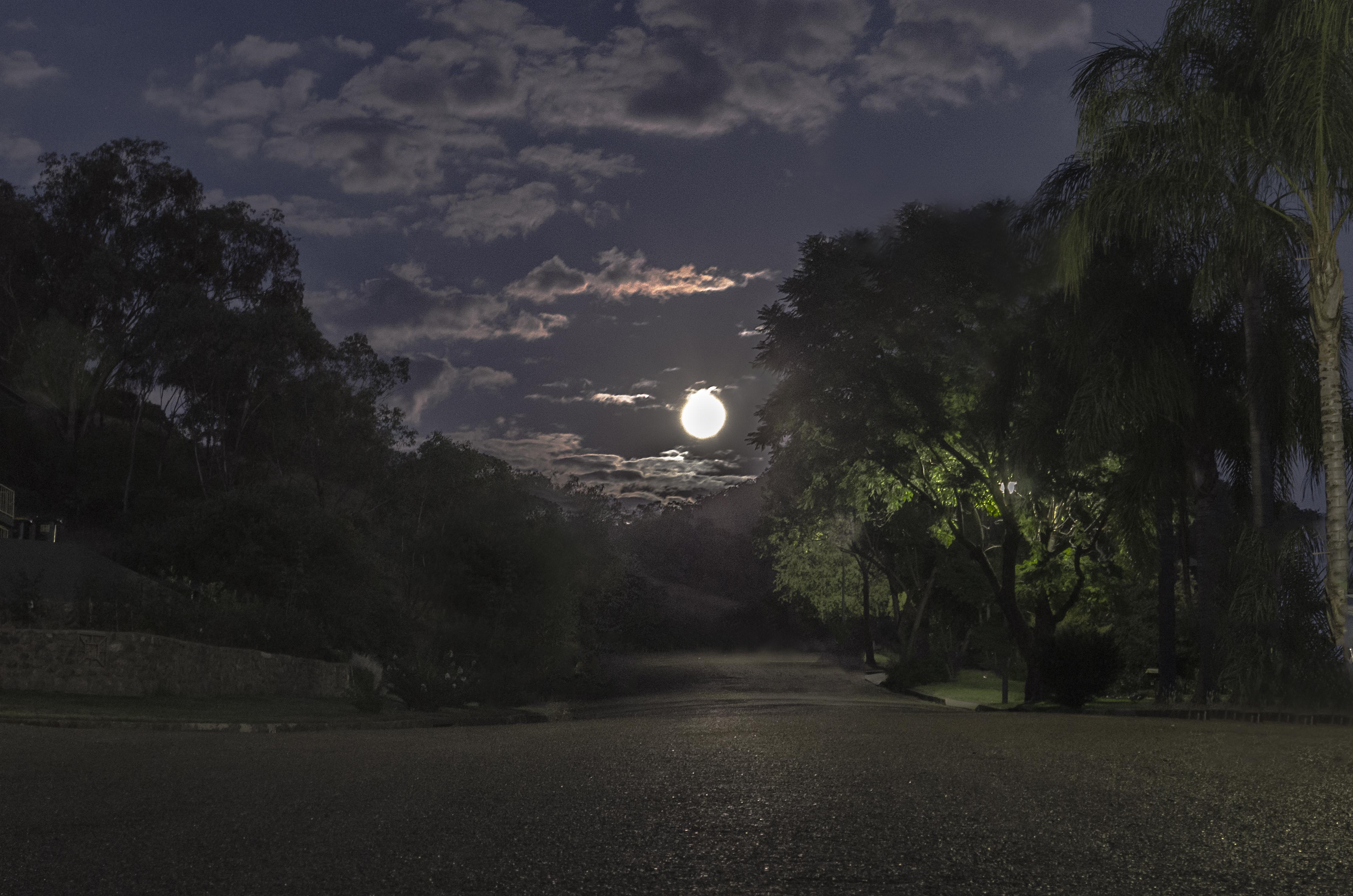 moon270313
